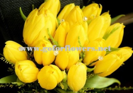 Choosing flowers and meaning of flowers go for flowers yellow will advance from surrounding colors and instill optimism and energy as well as spark creative thoughts mightylinksfo Image collections